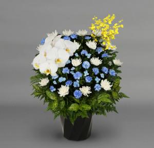 供花ブルー